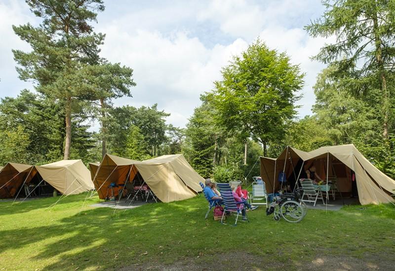 Camping De Waard.De Waard Tent Zilvermeeuw Hertshoorn